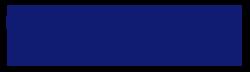 Logo 2021 Satellite Innovation